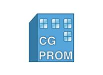 CG Prom