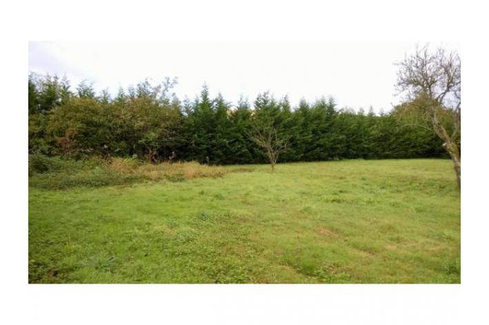 Vente terrain olivet 10 terrains constructibles vendre for Terrain olivet